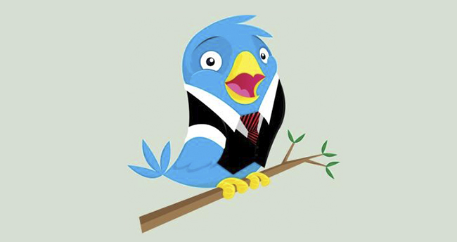 profesional-twitter